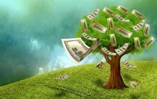 tree with money