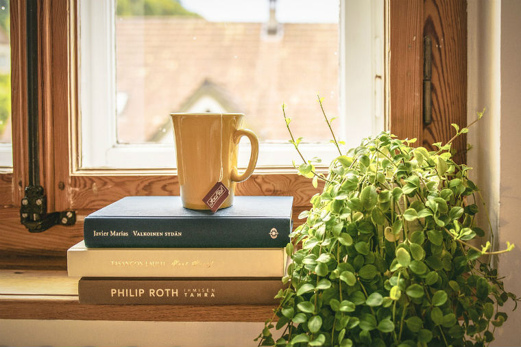 Plants books apartment