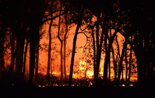wildfires wild fires West Coast