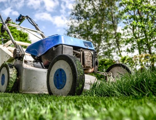 Consumers buying more lawn and garden equipment amid pandemic