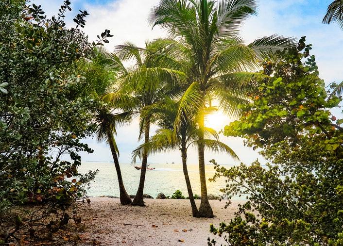 travel Florida students contest scholarship