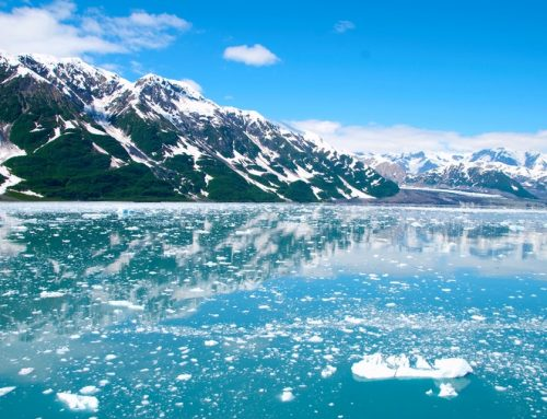 Royal Caribbean answers 'The Call of The Wild,' first to return to Alaska